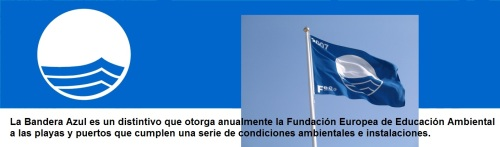 006 02 2013 Blue Flag Banner